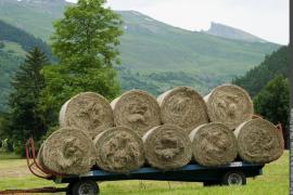 Remorque agricole chargée de balles de foin (Séez)