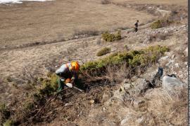 Travaux d'entretien des pelouses sèches à Aussois