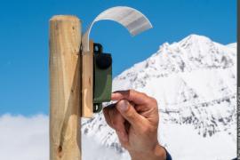 Réglage d'une balise bioacoustique pour l'étude du lagopède alpin