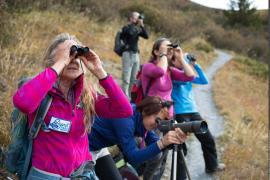 Sortie marquée Esprit parc national avec l'accompagnatrice en montagne Marie-Odile Dion
