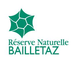 Logo RNN Bailletaz
