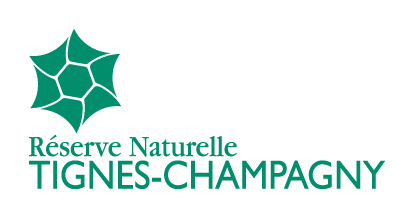 Logo RNN Tignes-Champagny